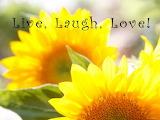 Nicole-katano-live-laugh-love-sunflower