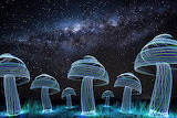 Light Art Mushrooms