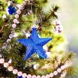 *Blue Star...