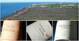 Açores, Wine, Portugal