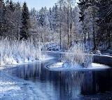 Winter Lake by Savanna