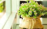Original adorno con flores