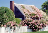 New england rose covered cottage