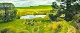 Sunny Shire
