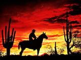 #Cowboy Sunset