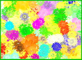 Floral Blanket Abstract