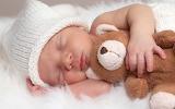 Baby, child, toy, sleep, bear, sleeping, fur, cap