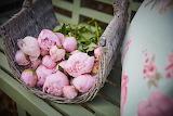 Peonies - Pink-Bouquet