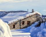 Rural Winter