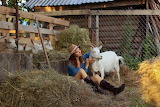 Girl, goat, hay, fence, hat, boots