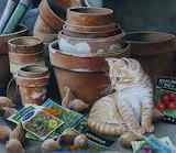 Susan Bourdet 'Assistant Gardener'