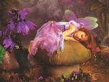 Fée endormie