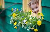 Flowers, mood, girl, window