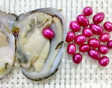 ^ Rice Freshwater Pearl Oyster Shell