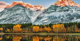Canadian Rocky Montains foliage