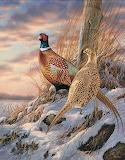 Pheasant par