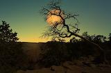 Landscape-