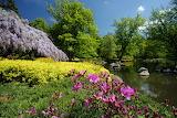 Wiosenne krajobrazy 2