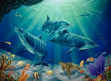 Dolphins in tropical waters