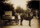 Hoffman's Brickworks Horse