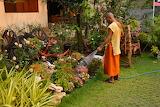Monk gardening in Thailand