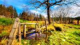 Creek, Germany