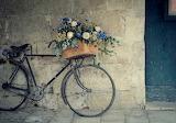 Flowers, bike, wall, basket, roses, box