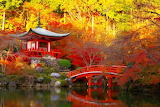 Beautiful image of Japan in the fall
