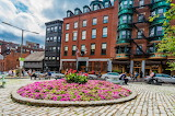 North Square in Bloom