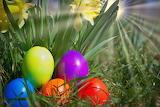 Easter 218