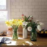 Vasetti di fiori in cucina