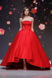 Elegant & Simple Red Gown