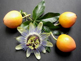 Passionfruit and flower