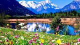 Mountains and- flowers
