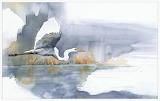 birds watercolor paintings