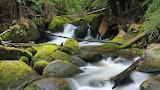 -landscapes-nature