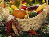 ^ Autumn harvest