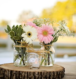 ^ Gerbera Daisies and Baby's Breath
