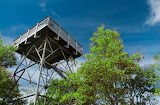 Mile 0131 Wesser Bald Observation Tower
