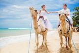 Beach, camels, sea, couple, man, woman, love