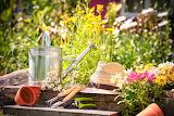 #Light Gardening