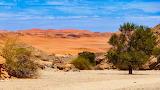 Desierto22