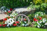 garden flower composition