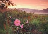 Walker Greg - Lake Arthur Sunrise
