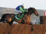 Our Vic and Timmy Murphy 2005 Paddy Power Gold Cup