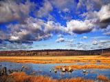 Lakeshore Park,Michigan,USA