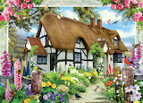 Busy cottage garden