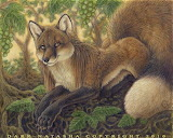Fable The Fox and the Grapes