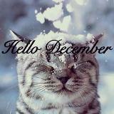 9d3ea017b6ad7db014fb6d9cd7797f74-welcome-december-quotes-hello-d
