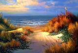Beautiful Sunset on Long Island Beach